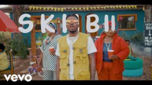 Skiibii - Are You Vhere AUDIO MP3 VIDEO MP4 DOWNLOAD