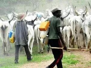 """Next Time You See Fulani Herdsmen, """"Don't Run"""", Do These 3 Things For Them!"""