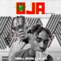 [MUSIC] Small Baddo Ft. C Blvck – Oja